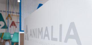 Animalia Pet Week