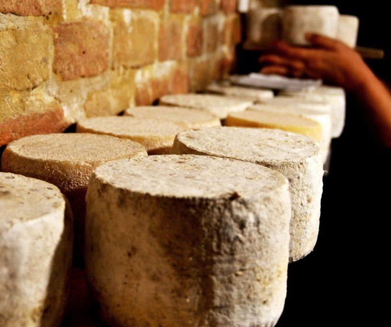 Caseifici Agricoli Open Day: i formaggi d'alpeggio più genuini
