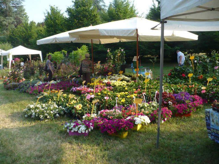 """Arriva il mese del """"pollice verde"""", eventi e laboratori per il tuo giardino"""