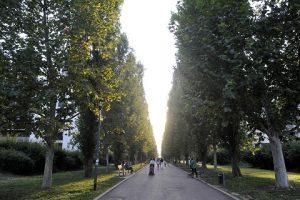 Il Parco Lambretta