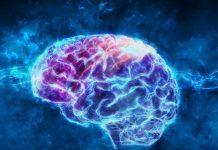 La lingua parlata influenza le malattie neurologiche