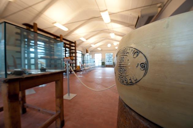 museo parmgiano