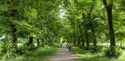 Il Parco di Monza non riaprirà il 4 maggio