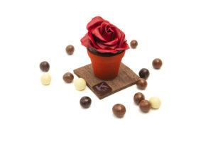 Rosa in cioccolato di Knam