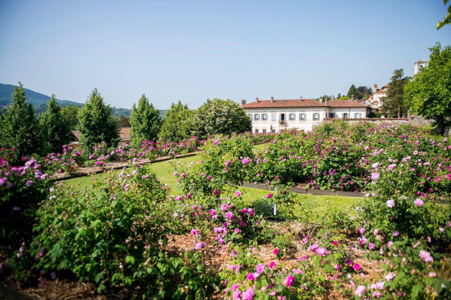 rose - villa della porta bozzolo