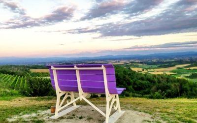 Lavanda - Monferrato Casalese