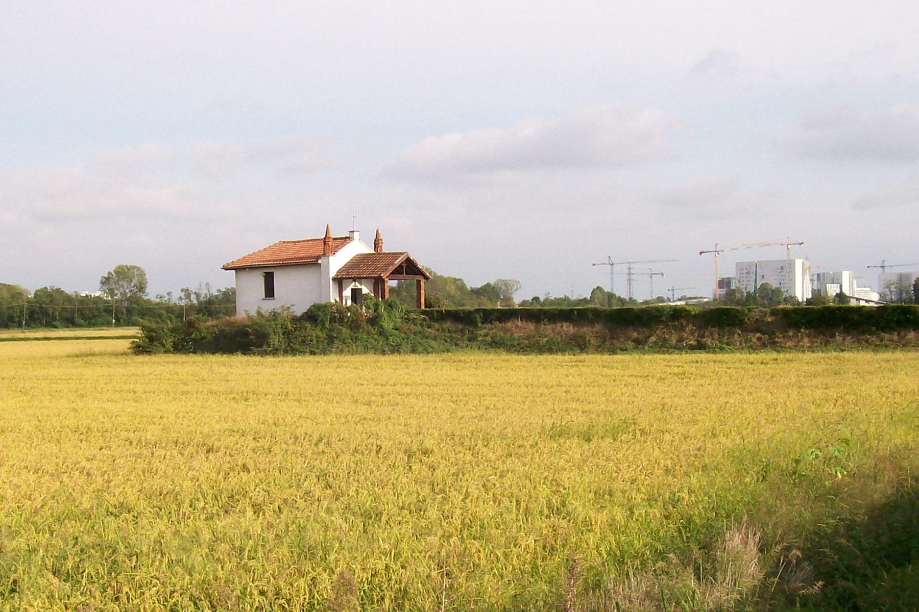 Parco delle risaie