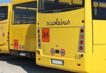 dpcm linee guida scuolabus