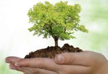 A Cernusco arriva il Festival dello Sviluppo Sostenibile