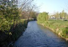fiume seveso parco nord milano