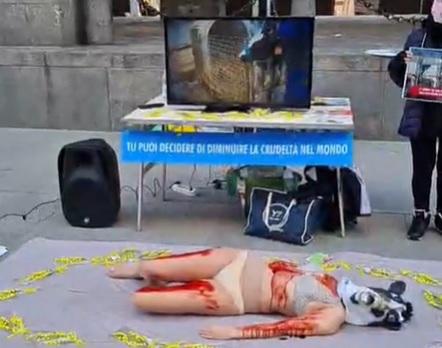 Iene Vegane in piazza: «Stop agnelli per Pasqua»